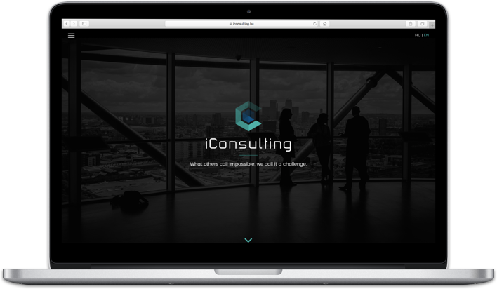 i-Consulting screenshot